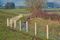 New wooden and wire fence protecting a stream flowing in to the River Hodder, Whitewell, Lancashire.