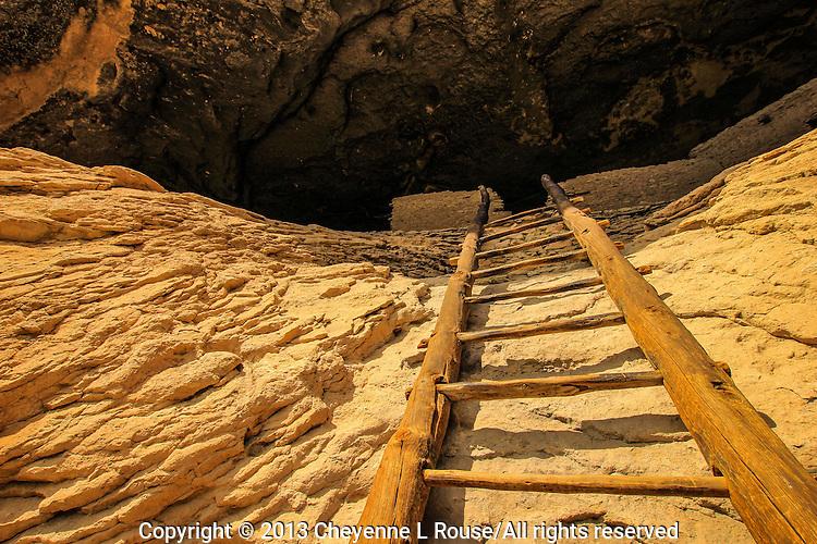 Gila Ladder - Gila Cliff Dwelling - New Mexico