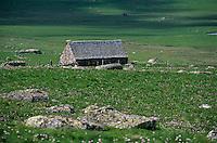 Europe/France/Auvergne/12/Aveyron/Env. de Nasbinals: Buron et pâturage en Aubrac