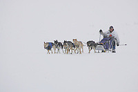 Jessie Royer on the trail nearing Nome in foggy conditions.    End of the  2005 Iditarod Trail Sled Dog Race.