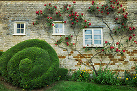 Roses and sculpture in front of cottage. The Cotswolds, England