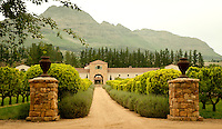 Situated in the heart of the red wine region, Waterford's winemaker, Kevin Arnold, has made a name for himself in this very competitive industry. The Tuscan architecture and beautiful entrance make it hard to imagine that you are indeed in Africa.