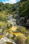 Stream formed by hot water spring in Waimangu Volcanic Valley, Rotorua