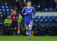 Rhys Healey of Cardiff City comes on during the Sky Bet Championship match between Cardiff City and Preston North End at Cardiff City Stadium, Wales, UK. Tuesday 31 January 2017