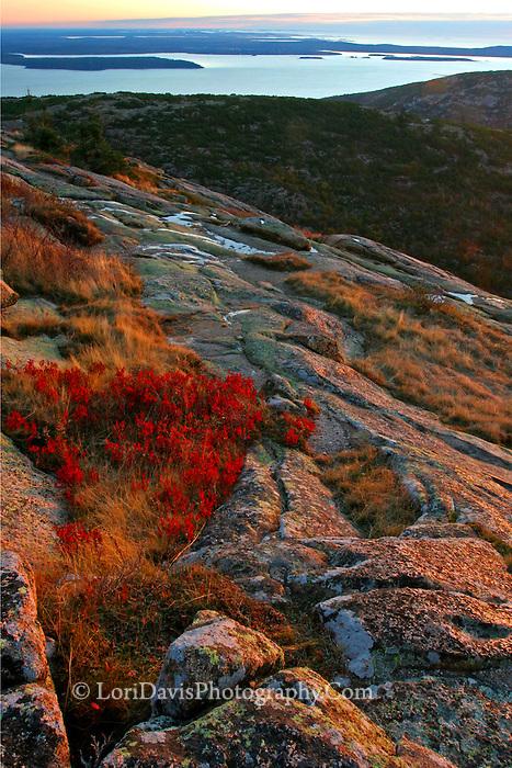 Autumn sunrise atop Cadillac Mt.  #A4