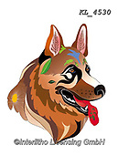 Interlitho-Alfredo, REALISTIC ANIMALS, REALISTISCHE TIERE, ANIMALES REALISTICOS, paintings+++++,shepherd,KL4530,#a#, EVERYDAY ,dog,dogs