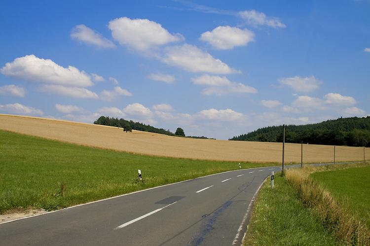 Europa, DEU, Deutschland, Rheinland Pfalz, Mittelrhein, Loreley, Reitzenhain, Agrarlandschaft, Sommer, Getreide, Anbau, Feld, Strasse, Verkehrsstrasse, Wolken, Cumuluswolken, Kategorien und Themen, Natur, Umwelt, Landschaft, Jahreszeiten, Verkehr, Strassenverkehr, Auto, Automobile, Mobil, Kraftfahrzeug, KFZ, Strasse, Verkehrsmittel, Mobilitaet, Unterwegs......[Fuer die Nutzung gelten die jeweils gueltigen Allgemeinen Liefer-und Geschaeftsbedingungen. Nutzung nur gegen Verwendungsmeldung und Nachweis. Download der AGB unter http://www.image-box.com oder werden auf Anfrage zugesendet. Freigabe ist vorher erforderlich. Jede Nutzung des Fotos ist honorarpflichtig gemaess derzeit gueltiger MFM Liste - Kontakt, Uwe Schmid-Fotografie, Duisburg, Tel. (+49).2065.677997, ..archiv@image-box.com, www.image-box.com]