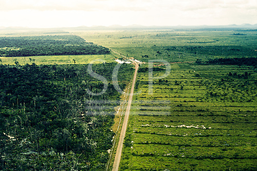 Amazon, Brazil. Aerial view of straight roads separating newly deforested areas and degraded rain forest.