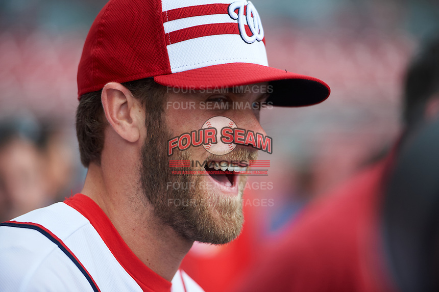 Washington Nationals Bryce Harper during practice before the MLB All-Star Game on July 14, 2015 at Great American Ball Park in Cincinnati, Ohio.  (Mike Janes/Four Seam Images)