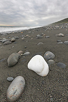 A lone white rock on the sandy beach of the Lost Coast, along the pacific ocean, Alaska.