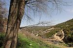 Wadi Shfanim in Meron Mountains