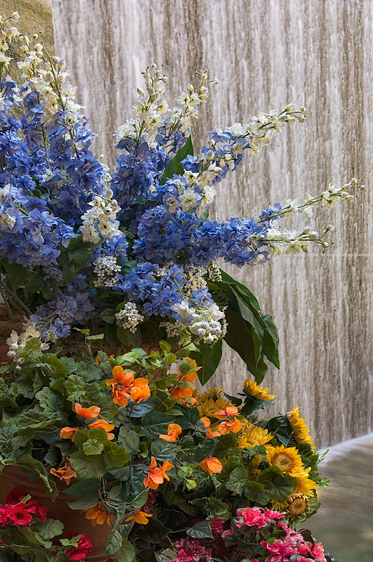 Flowers and waterfall in garden