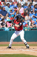 Matt Whatley (19) of the Hickory Crawdads at bat against the Charleston RiverDogs at L.P. Frans Stadium on May 13, 2019 in Hickory, North Carolina. The Crawdads defeated the RiverDogs 7-5. (Brian Westerholt/Four Seam Images)