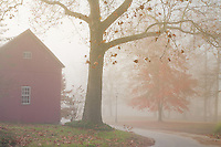 Farm house and country lane shrouded in a blanket of fog