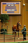 September 14, 2015: Hip 225 Giant's Causeway - Distorted Passion colt sold for $600,000, consigned by Taylor Made Sales.  Candice Chavez/ESW/CSM