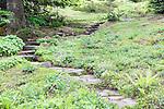 Flagstone Trail in Alpine Wildflowers.  Ohme Gardens, Wenatchee, Chelan County, Washington, USA.