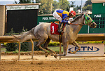 August 27, 2021 : Heretodaygonmanana (WV), #1, ridden by jockey Arnaldo Bocachica wins an allowance race on Charles Town Classic Day at Charles Town Race Course on August 27, 2021 in Ranson, West Virginia. Tim Sudduth/Eclipse Sportswire/CSM
