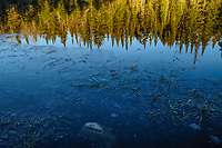 Ice Frozen On Cedar Lake In The Adirondack Mountains Of New York State