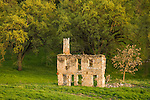Stone ruins of the historic Bonham-Gephardt house in the rural Sierra Nevada Foothills of Amador County, Calif.