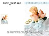 Alfredo, WEDDING, HOCHZEIT, BODA, photos+++++,BRTOXX01962,#W#