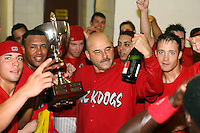 September 15 2008:  Jose Garcia, Miguel Tapia, Mark DeJohn, Dan Richardson of the Batavia Muckdogs, Class-A affiliate of the St. Louis Cardinals, celebrate winning the NY-Penn League championship after a game at Dwyer Stadium in Batavia, NY.  Photo by:  Mike Janes/Four Seam Images