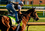 April 27, 2021: Highly Motivated, trained by trainer Chad Brown, exercises in preparation for the Kentucky Derby at Churchill Downs on April 27, 2021 in Louisville, Kentucky. Scott Serio/Eclipse Sportswire/CSM