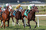 September 20, 2014: #5 Edge of Reality, Irad Ortiz Jr. up, survives a challenge from Roadhog (#6, left) to win the Alphabet Soup Handicap, a mile and 1/16 on the turf for Pennsylvania breds three and upward on Pennsylvania Derby Day at Parx Racing in Bensalem, PA. Joan Fairman Kanes/ESW/CSM