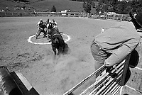 Amateurs from the crowd compete in a money event at the annual Lincoln Rodeo in Lincoln, MT in June 2006.  Particpants pay a fee and spectators bet on the participants in this event in which the last person in the circle after being charged by a bull is declared the winner.  The Lincoln Rodeo is an open rodeo, which means competitors need not be a member of a professional rodeo association.