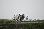 A man ploughing his field at Joana village in Jajmau, Kanpur. The crop fields of Jajmau are contaminated with harmful chemicals as wastewater from the tanneries are used to irrigate these lands. Farmers here suffer from rashes, boils, papules, vesicles, eczema, ring worm, white spots, blisters, decay of nails, advance stages of leprosy, numbness of limbs etc. Kanpur, Uttar Pradesh, India, Arindam Mukherjee..