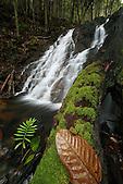 Cascade, Monts Koghis, Nouvelle-Calédonie