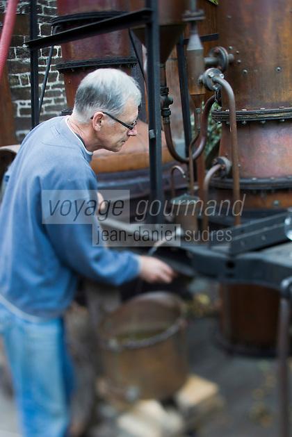 Europe/France/Basse-Normandie/50/Manche/ Saint-Jean-des-Champs: Ferme de l´Hermitière,  Jean-Luc Coulombier distille à l'alambic son Calvados // Europe,France,Normandie,Basse-Normandie,Saint-Jean-des-Champs: Ferme de l´Hermitière , <br /> Jean-Luc Coulombier distilled at the still the Calvados
