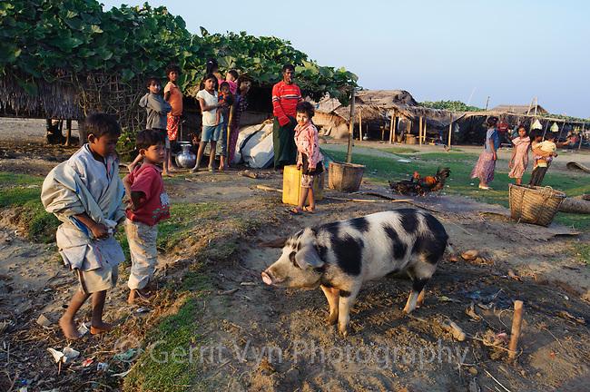 Families gather around a pig on Nan Thar Island, Myanmar.