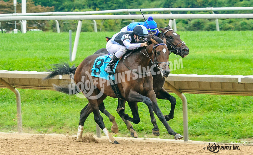 Speaking Scout winning at Delaware Park on 10/6/21