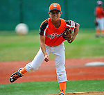 July 30, 2015: Scenes from Iron Bracket competition during the Cal Ripken World Series at the Ripken Experience powered by Under Armour in Aberdeen, Maryland. Jon Durr/Ripken Baseball/CSM