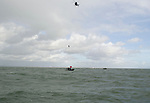 Pictured: John Bream jumping from the aircraft.<br /> <br /> A daredevil former paratrooper today set a world record after he jumped 131ft into the sea from a helicopter without a parachute. John Bream, who is nicknamed 'John the Flying Fish', plummeted into the sea feet-first at 75mph as part of his daring stunt. <br /> <br /> The 34 year old, who fell for around four seconds before hitting the water, has set two records as a result of his dive, which he took on to raise awareness for veteran suicide. Mr Bream set a world record for the highest freefall into water from an aircraft and the record for jumping into British waters following today's leap into the Solent off Hayling Island, Hants. SEE OUR COPY FOR MORE DETAILS<br /> <br /> <br /> © Portsmouth News/Solent News & Photo Agency<br /> UK +44 (0) 2380 458800