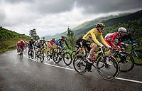 yellow jersey / GC leader Tadej Pogacar (SVN/UAE-Emirates) up the Col de Port<br /> <br /> Stage 16 from El Pas de la Casa to Saint-Gaudens (169km)<br /> 108th Tour de France 2021 (2.UWT)<br /> <br /> ©kramon