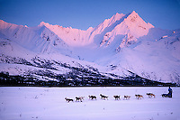 D Jonrowe Mushes near Rainy Pass Ak Range 2000 Iditarod AK
