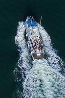 France, Gironde (33),Bassin d'Arcachon,  - vue aérienne, bateau d'excursion  //  France, Gironde, Bassin d'Arcachon, Excursion boat  - aerial view