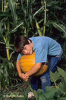HS18-078x  Boy harvesting pumpkin from garden