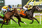 OCT 09, 2021: Bubble Rock, ridden by Irad Ortiz, Jr.,, wins the Gr.3  Matron Stakes, for 2 year old fillies, goinng 6 furlongs on the turf, at Belmont Park, Elmont, NY.  Sue Kawczynski/Eclipse Sportswire/CSM