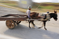 Man driving donkey pulling cart down road, China, Asia
