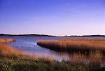 Europe, DEU, Germany, Mecklenburg West Pomerania, Rugen Island, Lietzow, Little Jasmunder Bodden, Typical landscape, Banks, Shore