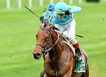 ELMONT, NY - OCTOBER 08: Lady Eli #5, ridden by Irad Ortiz, wins the Flower Bowl Invitational on Jockey Club Gold Cup Day at Belmont Park on October 8, 2016 in Elmont, New York. (Photo by Scott Serio/Eclipse Sportswire/Getty Images)