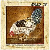 Lori, STILL LIFE STILLEBEN, NATURALEZA MORTA, paintings+++++8-Rooster2,USLS74,#i#, EVERYDAY