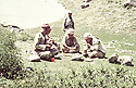 Iraq 1983 <br /> Left, Sheikh Mohammed Khaled Barzani, next, Idris Barzani in Qalashin, having lunch   <br /> Irak 1983 <br /> Dejeuner a Qalashin , a gauche, Sheikh Mohammed Khaled Barzani, next, Idris Barzani