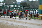 HOT SPRINGS, AR - MARCH 12: Horses leaving the starting gate in the Honeybee Stakes at Oaklawn Park on March 12, 2016 in Hot Springs, Arkansas. (Photo by Justin Manning)