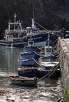 Europe/France/Bretagne/29/Finistère/Brigneau: Bateaux sur le port