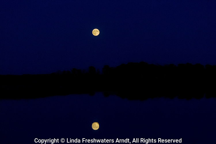 Crex Meadows moon reflection (northwest Wisconsin).