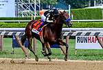 SARATOGA SPRINGS, NY - AUGUST 25: Marley's Freedom  #7, ridden by jockey Mike Smith, wins the Ballerina Stakes on Travers Stakes Day at Saratoga Race Course on August 25, 2018 in Saratoga Springs, New York. (Photo by Bob Mayberger/Eclipse Sportswire/Getty Images)