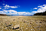 Clam digging on minus tide.  Penrose Point State Park offers camping, fishing, claming, hiking and picnicking on one of Puget Sound's most scenic southern beaches.  Near Lake Bay, Bay Lake, and towns of Union and Home on the Key Penninsula in southern Puget Sound. Olympic Peninsula